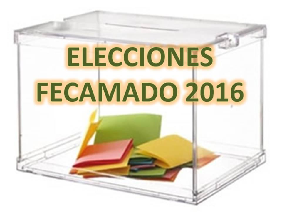 Elecciones Federación Orientación 2016